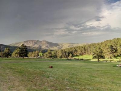 estes park 420 friendly vacation home